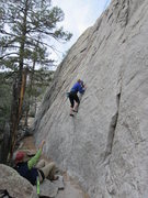 Rock Climbing Photo: Debra Powell on Blue Collar Tweekers