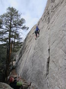 Rock Climbing Photo: My Name is Mud starts in the obvious feature at th...