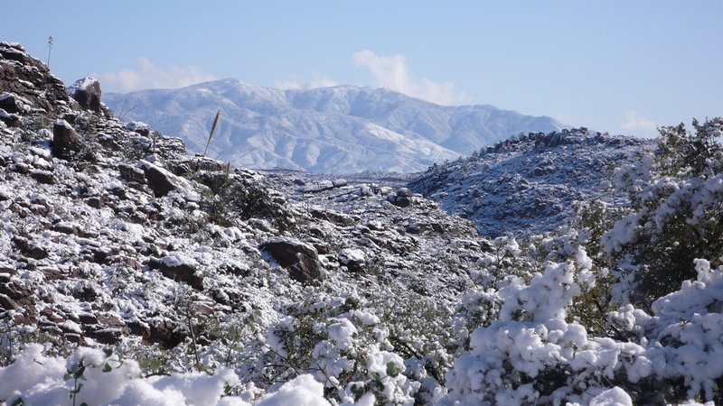 Pinal Mtns from the road in...
