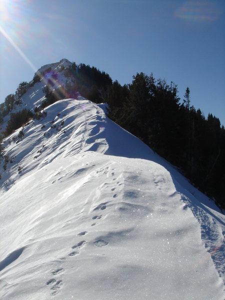 East Ridge of Mt. Raymond.  12/11/11