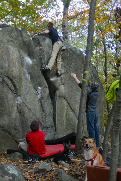 Rock Climbing Photo: jheard on the Y crack