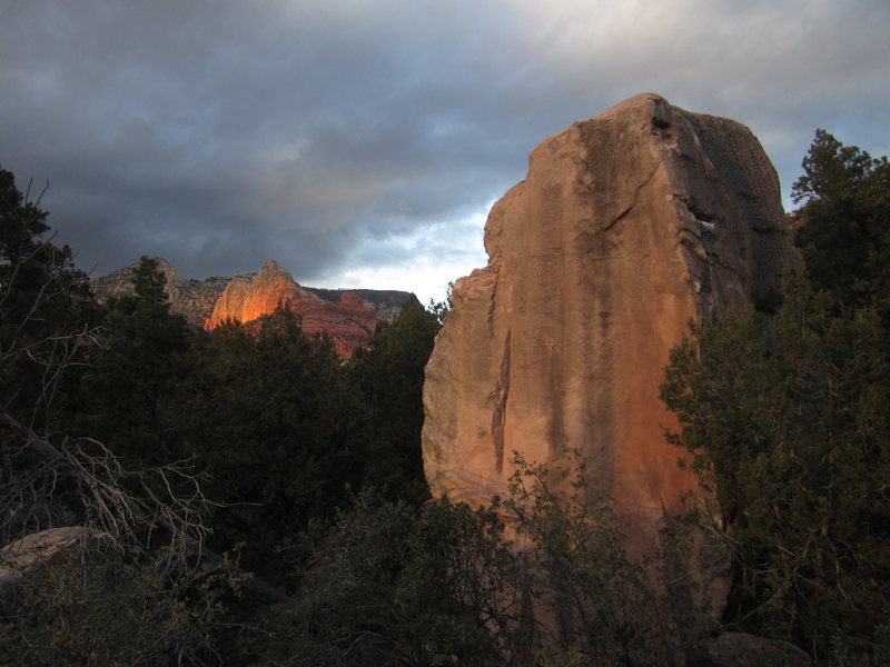 One of the Anvil Boulders at sunset. A hand full of tall problems summit this boulder, including the Nopinyon Arete on the left, and Wordman, the arete partially obscured by the tree.