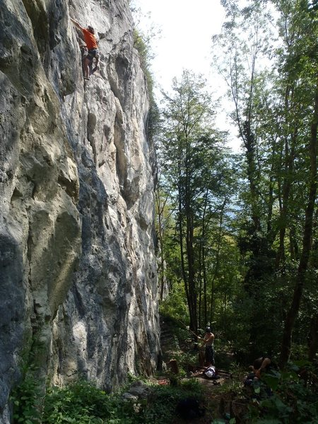 Rock Climbing Photo: Getting up there on Krebs 6c