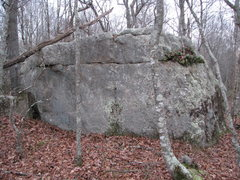 Rock Climbing Photo: The Briar Patch Boulder - It obviously needs recle...