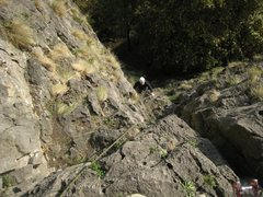Rock Climbing Photo: Coming out of the woods on the first pitch of Lied...