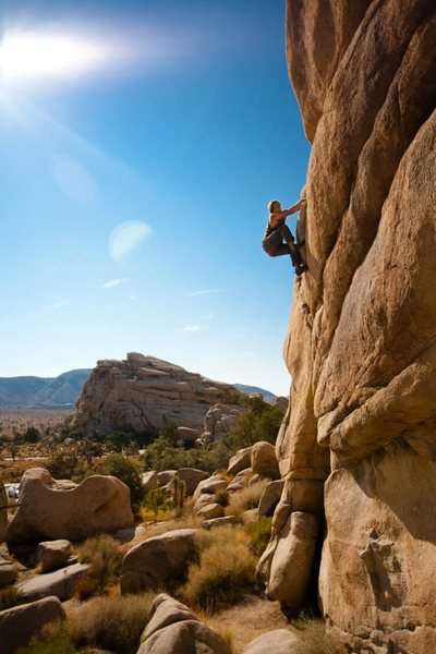 Rock Climbing Photo: betty jo yablonski