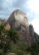 Rock Climbing Photo: Great White Throne from Zion Canyon