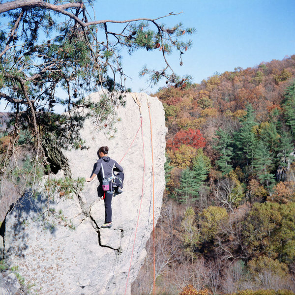 Rock Climbing Photo: Anonymous climber on Strawberry Jam