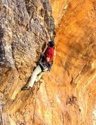 First ascent of Shelf Life