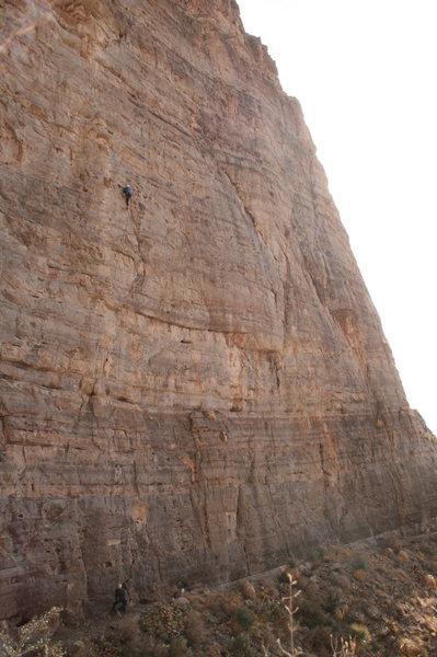 Rock Climbing Photo: Tall