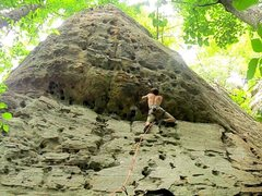 Rock Climbing Photo: fun roof pulling on johnny B goode; 11a