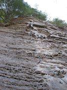 Rock Climbing Photo: Gettin Lucky in Kentucky 5.10b RRG