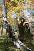 Rock Climbing Photo: Reaching the Nipple.