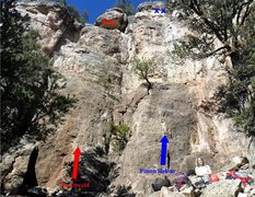 Rock Climbing Photo: Pinon Slalom is the route on the right.