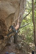 Rock Climbing Photo: Moving through the flared crack on Renaissance Man...