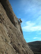 "Rock Climbing Photo: Leader pulling the bulge on ""Yellow Rose of T..."