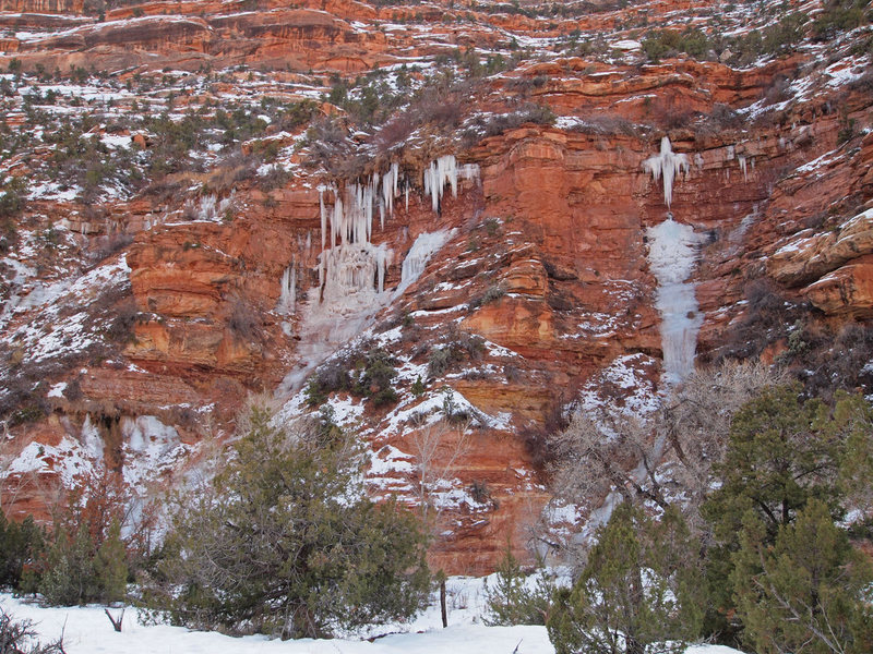 Arch Canyon Ice
