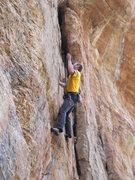Rock Climbing Photo: Josh on Go Speed Racer