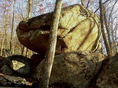 Rock Climbing Photo: Bouldergasm