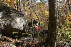 Rock Climbing Photo: T. melin on milk dud v5