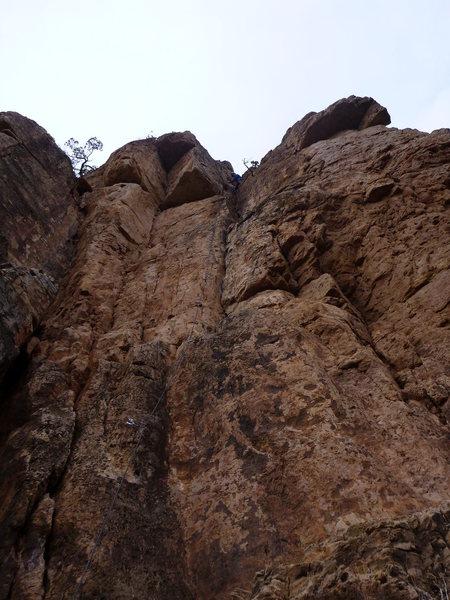 Rock Climbing Photo: BR1 cruisin'.