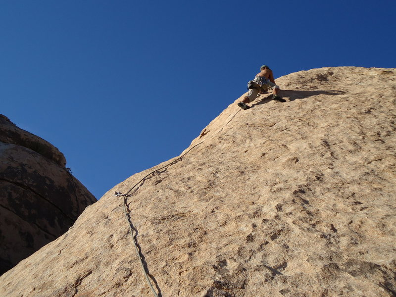Guess I had to climb too.