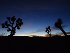 Rock Climbing Photo: With a long hike through Dr. Seuss Land...