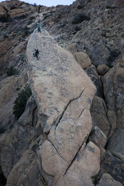 Rock Climbing Photo: Nightstalker