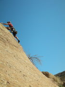 """Rock Climbing Photo: Past the steep moves on """"Sexy Tractor'"""" ..."""