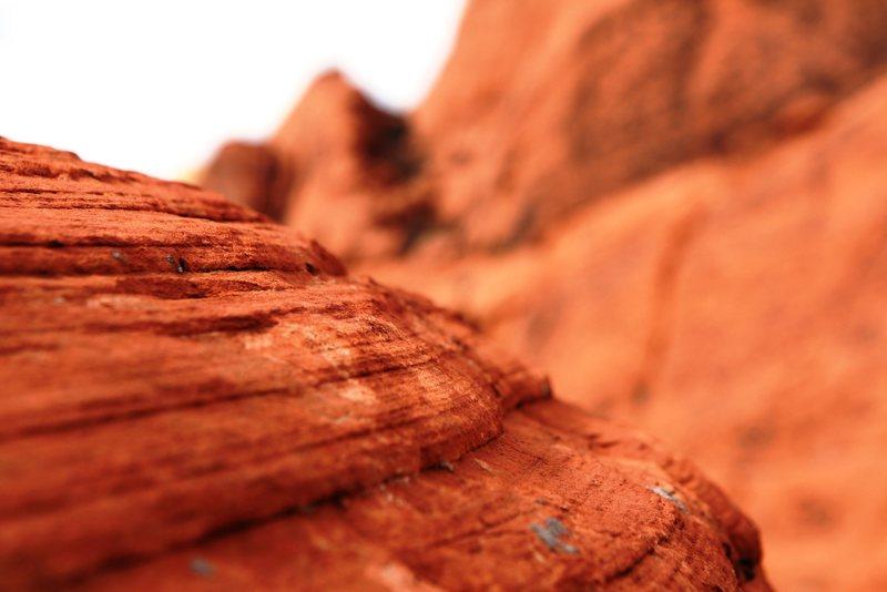 Rock Climbing Photo: Red Rock Texture