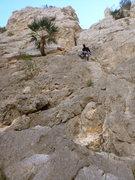 Rock Climbing Photo: First Pitch Gnar Gnar!