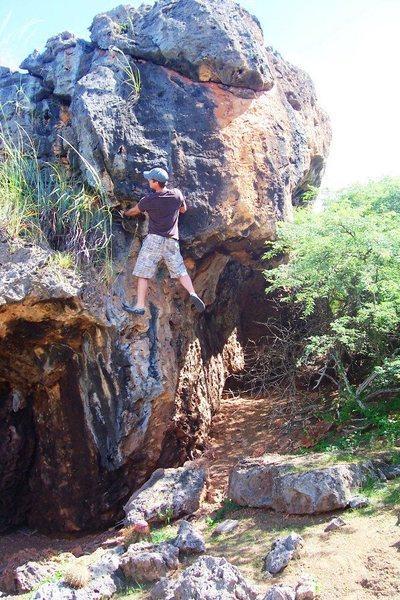 Rock Climbing Photo: Lizard Beard