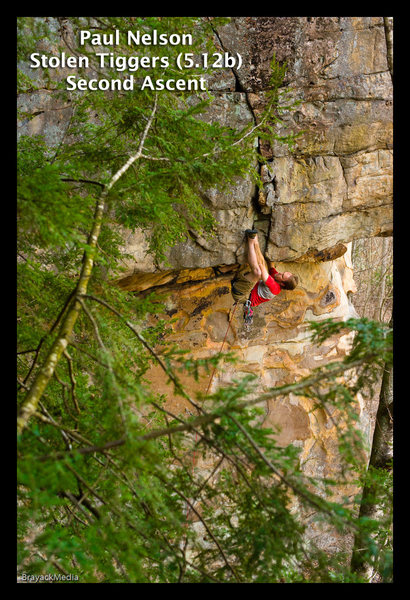 Rock Climbing Photo: Camhead on Stolen Tiggers, 12b, Meadow River, NRG,...