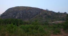 Rock Climbing Photo: view of the main rock from the dirt road.