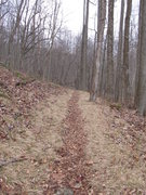 Rock Climbing Photo: The trail up from the lot. The first boulder you w...