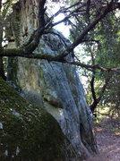 Rock Climbing Photo: Platypus north face