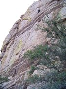 Rock Climbing Photo: Derek up high on his new route...
