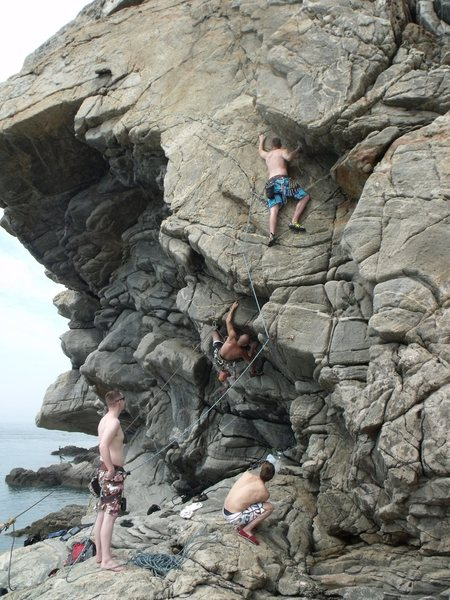 summer at the sea-cliffs