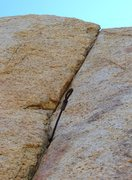 Rock Climbing Photo: Gear in the aid seam to the right of Her Crack, Is...