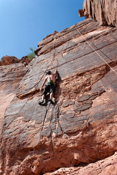 Rock Climbing Photo: Nelson on TR on Ace of Hearts