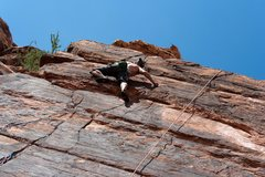 Rock Climbing Photo: watch out for bats in the cracks near the top!