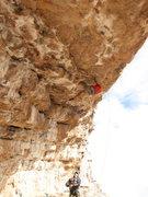 Rock Climbing Photo: Renaissance Man is steep!