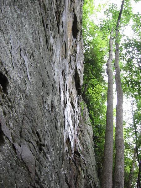 Nice climb.