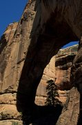 Rock Climbing Photo: Cathedral Arch