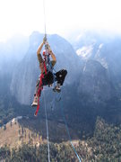 Rock Climbing Photo: jugging on the salathe head wall, el cap.