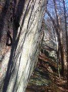 Rock Climbing Photo: Crusty old aid traverse.