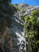 Rock Climbing Photo: Chlorochose generally follows the dashed yellow li...