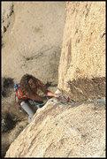 """Rock Climbing Photo: Susan Peplow following """"Genuine Cowhide""""..."""