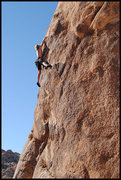 """Rock Climbing Photo: Steve Belford on """"Pet or Meat"""". Photo by..."""