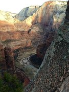 Rock Climbing Photo: From Angel's Landing, Zion- 2 weeks ago.